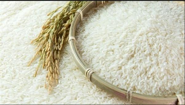 daftar agen beras gotong royong di tegal gundil bogor
